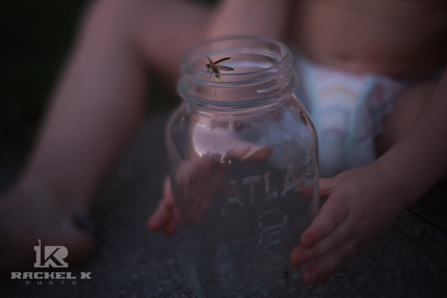 Fireflies by Arlington Virginia photographer Rachel K Photo