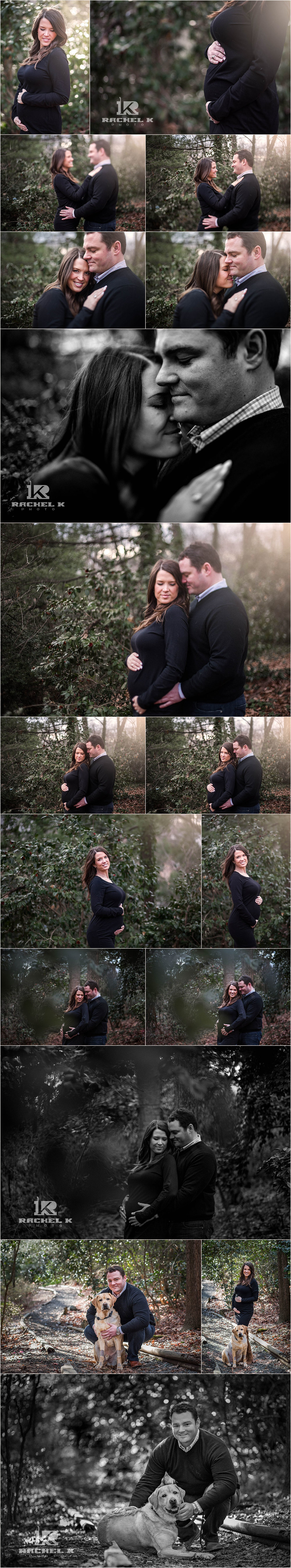 Maternity session dog in Northern Virginia by Rachel K Photo
