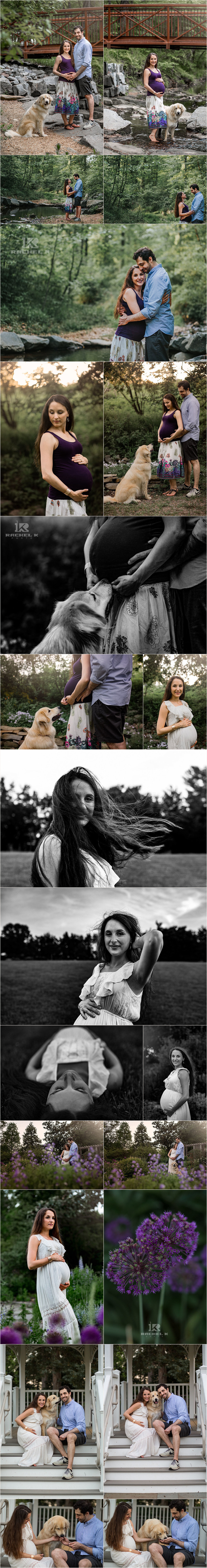 Alexandria Virginia maternity session with dog by Rachel K Photo