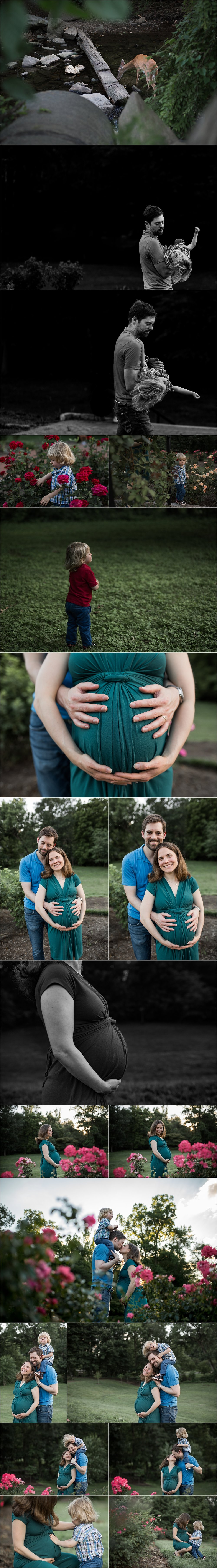 Arlington Virginia maternity session with toddler