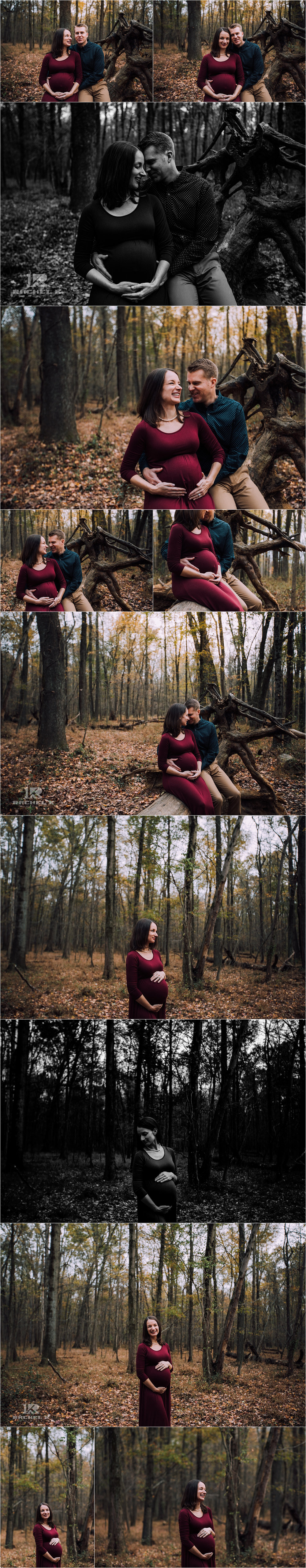 Alexandria Virginia maternity session at Huntley Meadows by Rachel K Photo