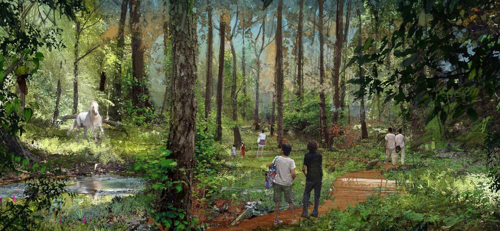 forestSKpen.jpg