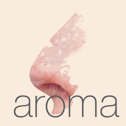 aroma1.png
