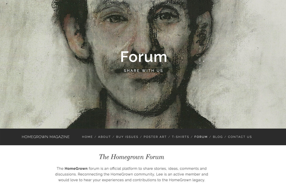 website-design-for-digital-magazines-and-tshirt-shops.jpg