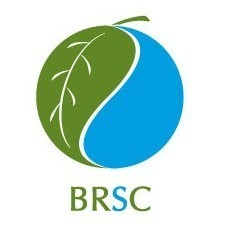 brsc logo.jpg