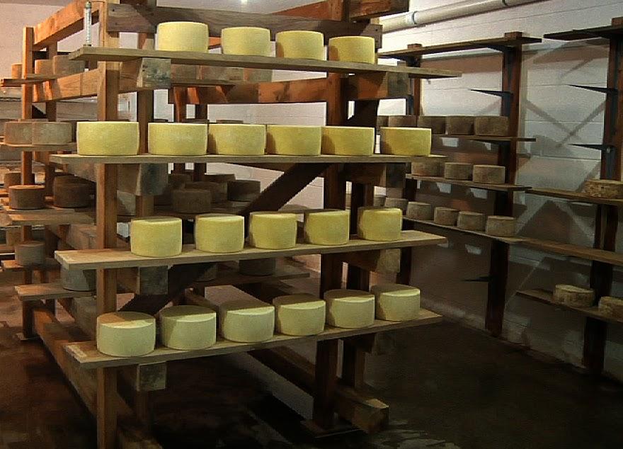 02 cheese.jpg