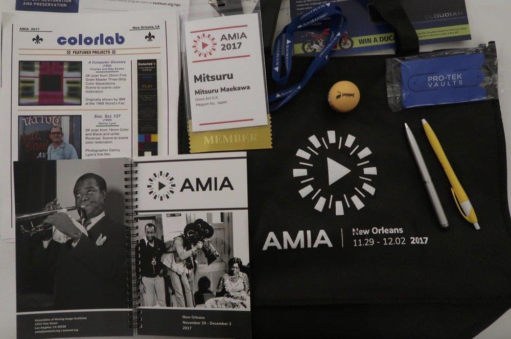 Mitsuru Maekawa:AMIA2017報告