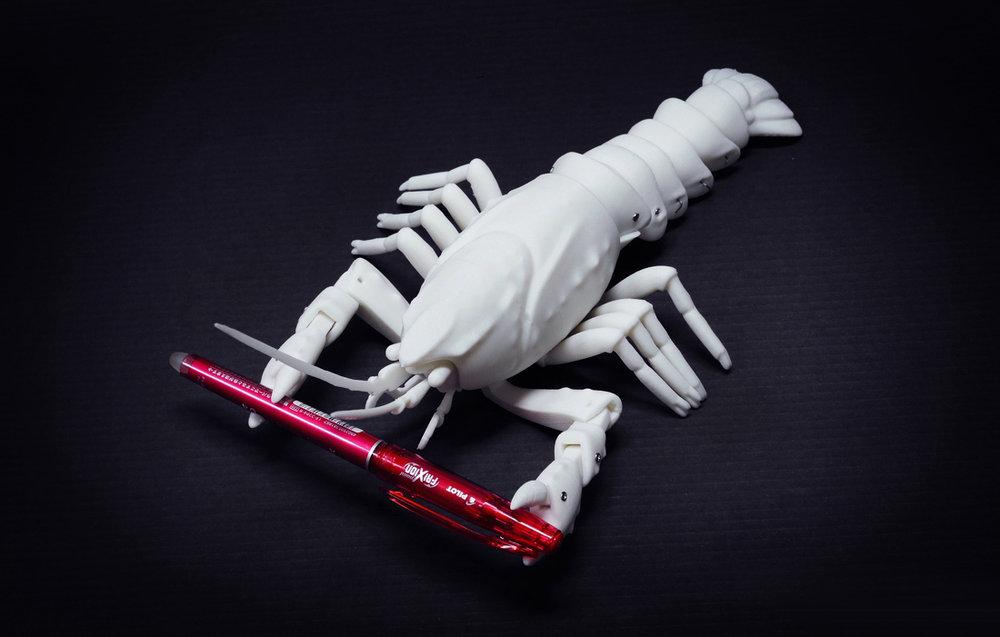가재  몸통과 관절, 다리, 더듬이를 개별 프린팅하여 조립