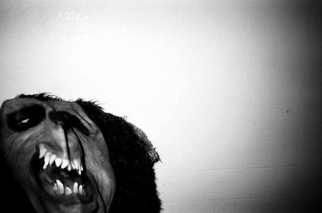 The Bear: *roar* #urbanfright 📷