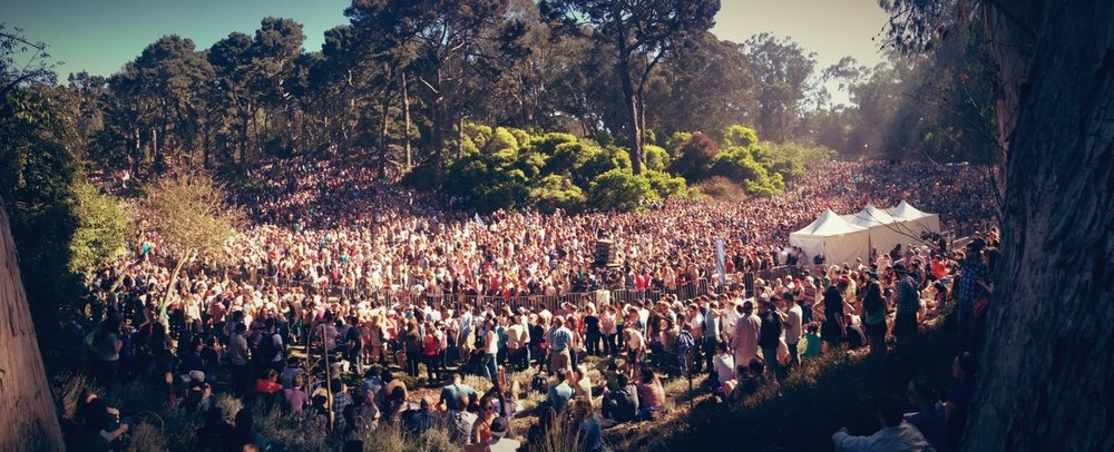 Rooster Meadow at Hardly Strictly Bluegrass