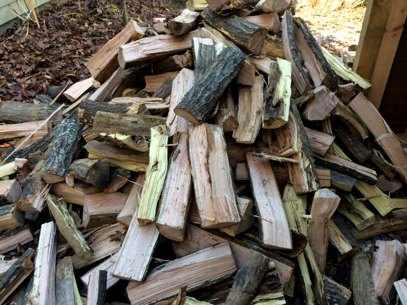 We also earned our dinner by splitting and piling wood. Here's the wood that we split before we stacked it up.