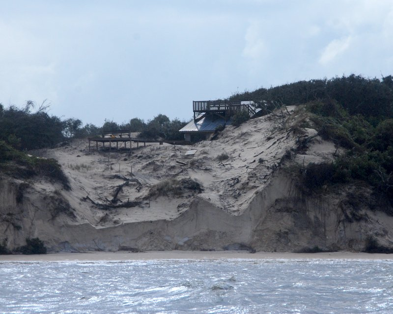 Next we sailed to Cumberland Island and saw more dramatic erosion on its sandy cliffs.