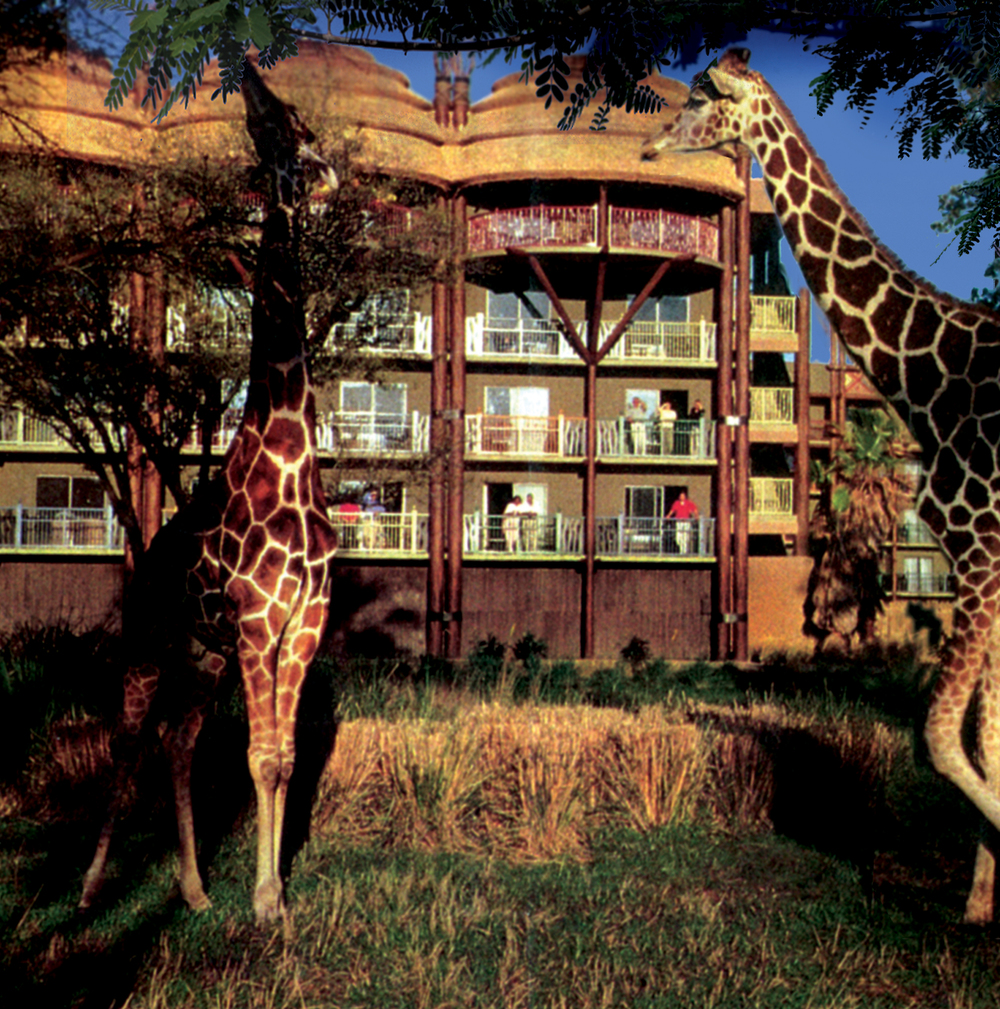 animal_kingdom_lodge_disney_orlando_florida_giraffes.jpg