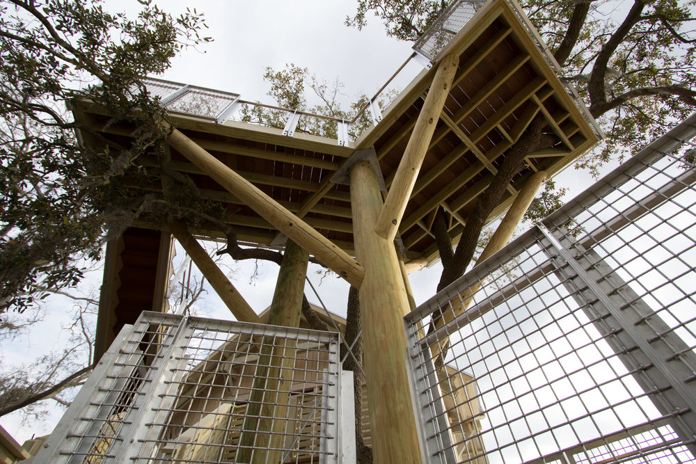 Treehouse at Moreland Village