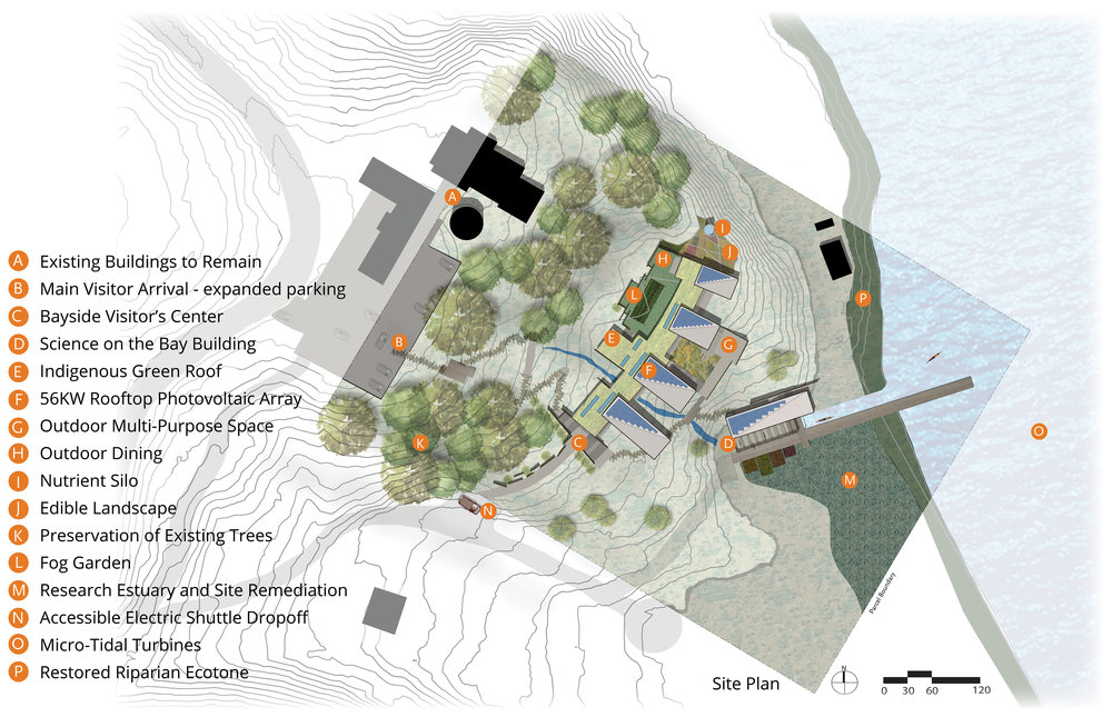 Aestus Site Plan SMALLER.jpg