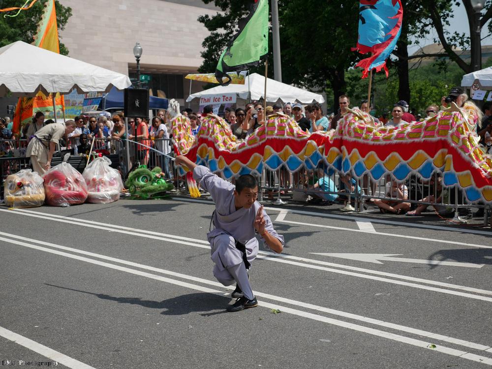 fiesta_asia_street_festival_2015_martial_arts_04.jpg