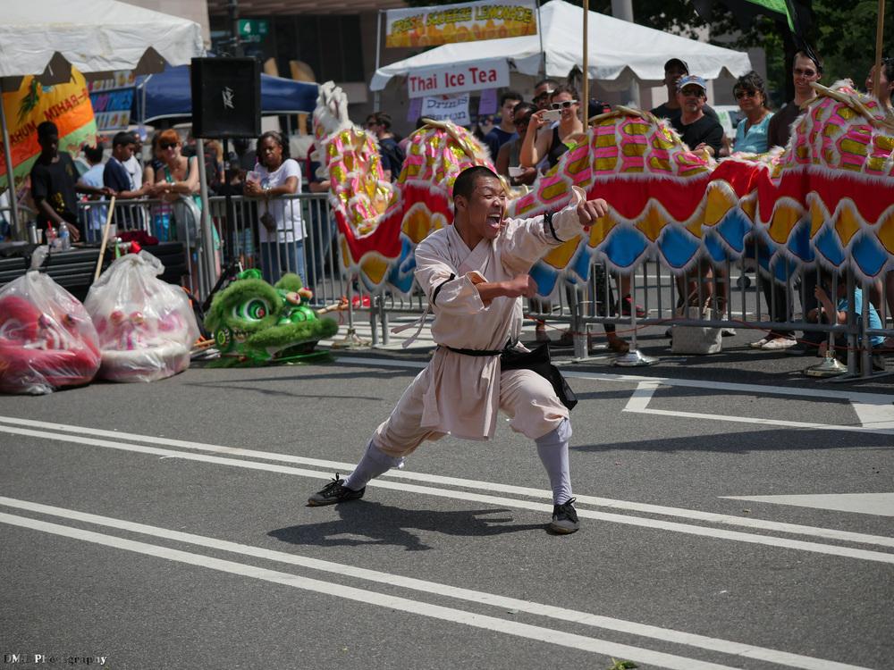 fiesta_asia_street_festival_2015_martial_arts_05.jpg