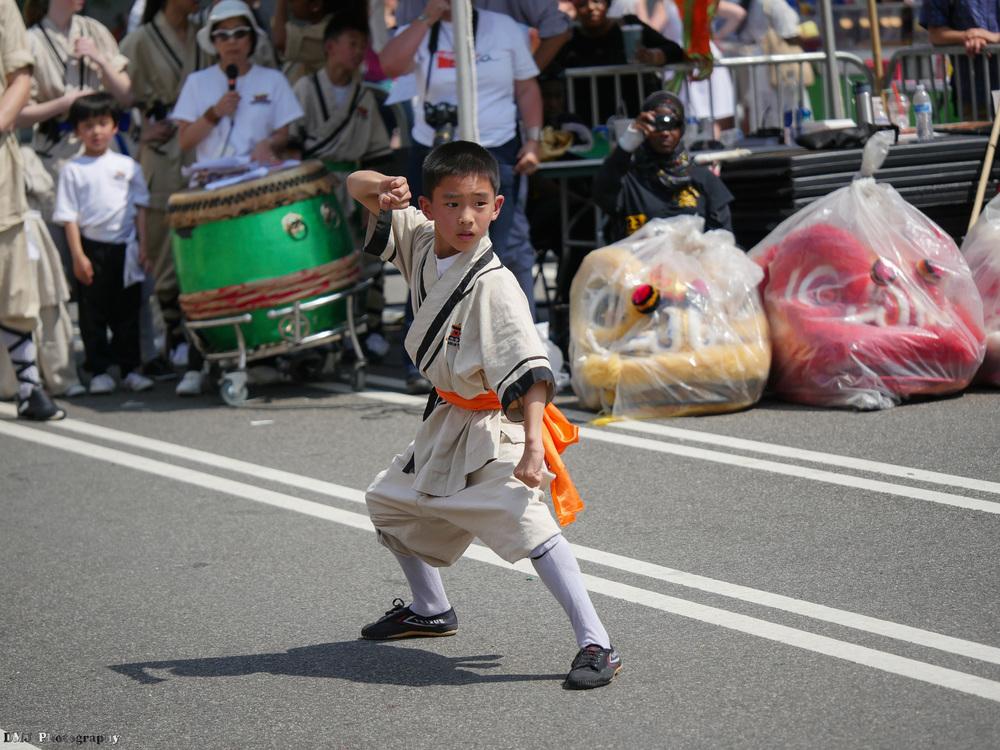 fiesta_asia_street_festival_2015_martial_arts_07.jpg