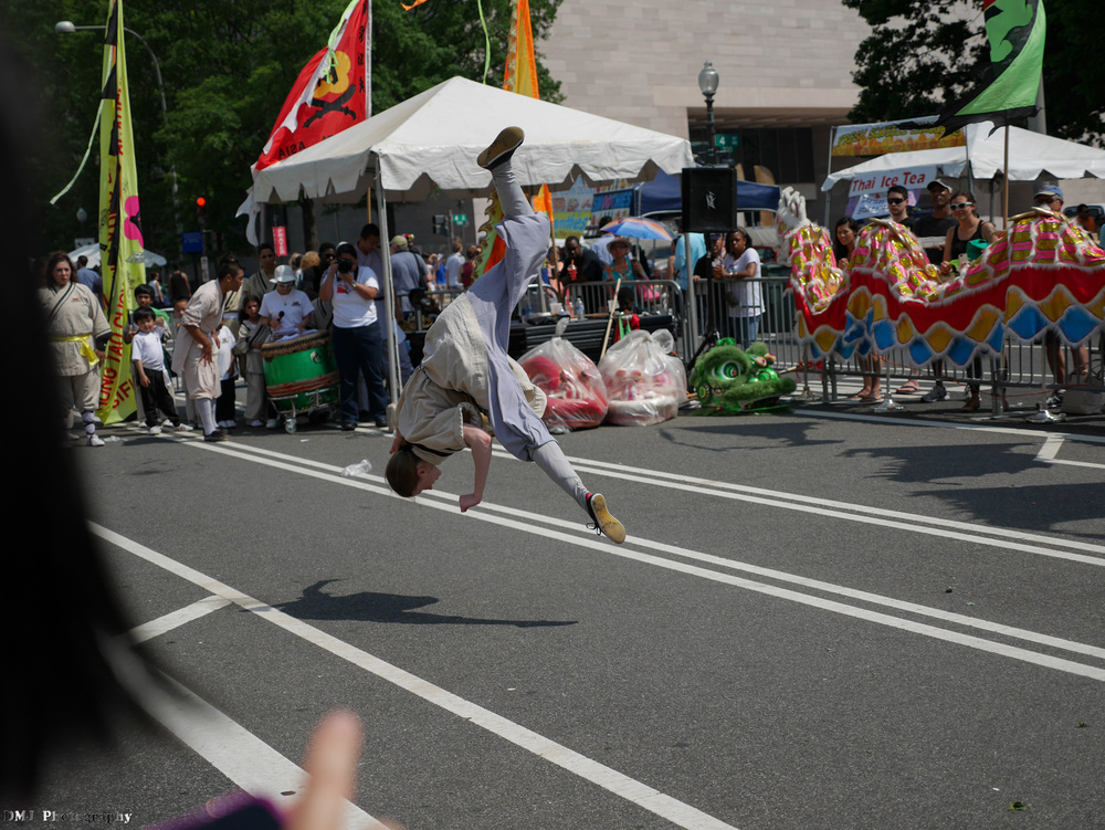 fiesta_asia_street_festival_2015_martial_arts_08.jpg