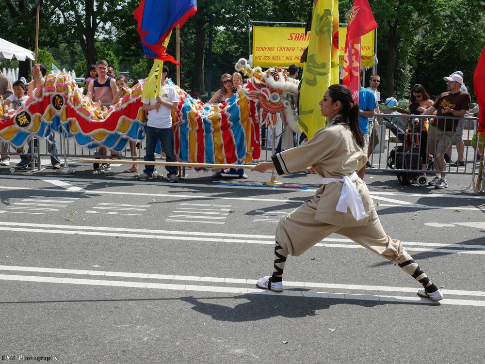 fiesta_asia_street_festival_2015_martial_arts_12.jpg