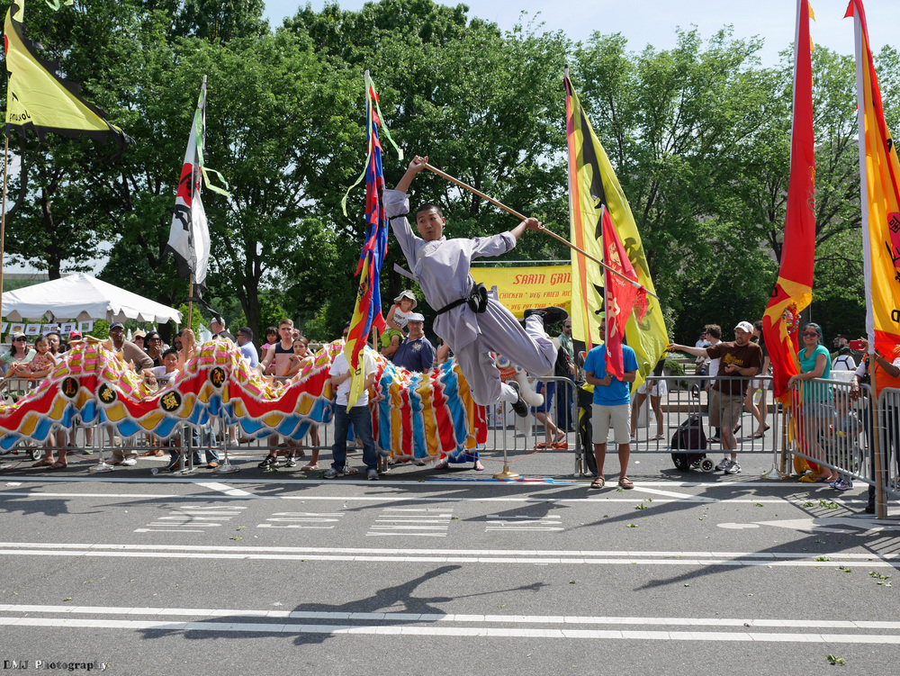 fiesta_asia_street_festival_2015_martial_arts_13.jpg