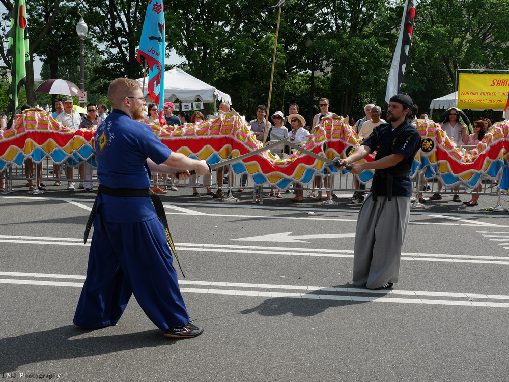 fiesta_asia_street_festival_2015_martial_arts_18.jpg