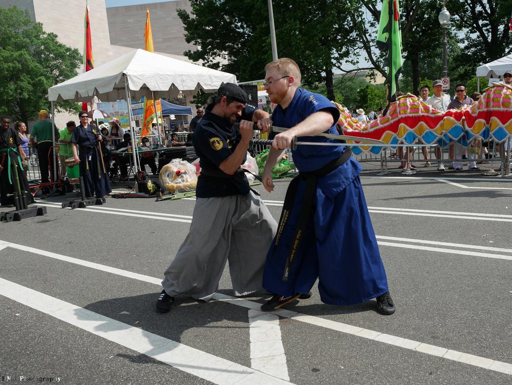 fiesta_asia_street_festival_2015_martial_arts_19.jpg