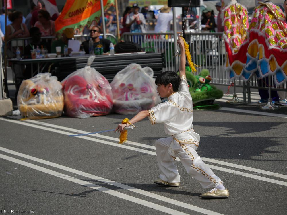 fiesta_asia_street_festival_2015_martial_arts_20.jpg