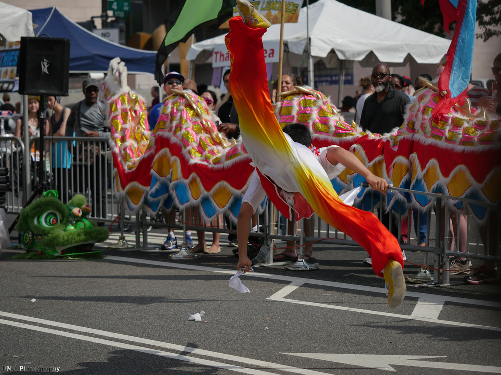 fiesta_asia_street_festival_2015_martial_arts_25.jpg