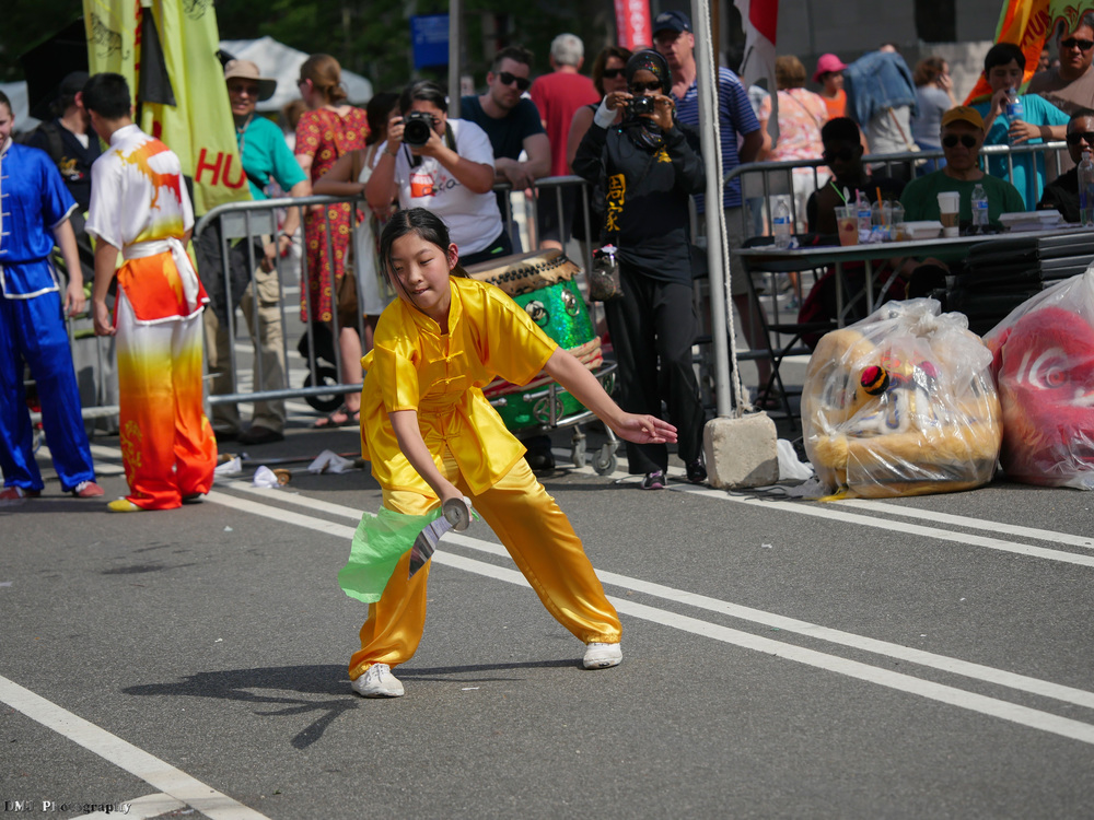 fiesta_asia_street_festival_2015_martial_arts_26.jpg