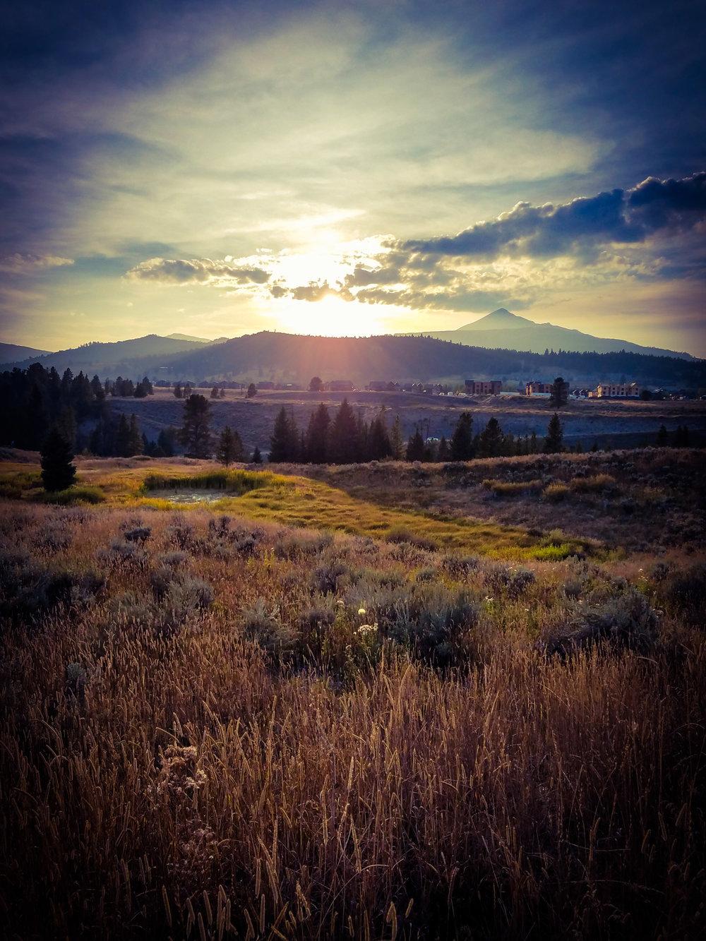 Lone Peak Sage.jpg