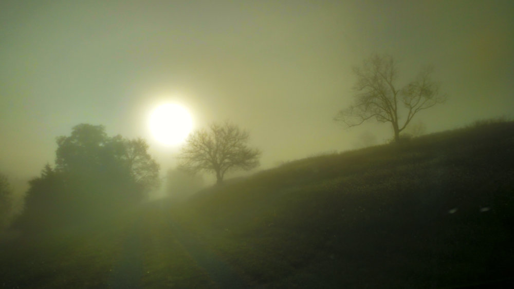 Stunning views of sunrise en route to Kathleen's, mystified by the ghostly fog...
