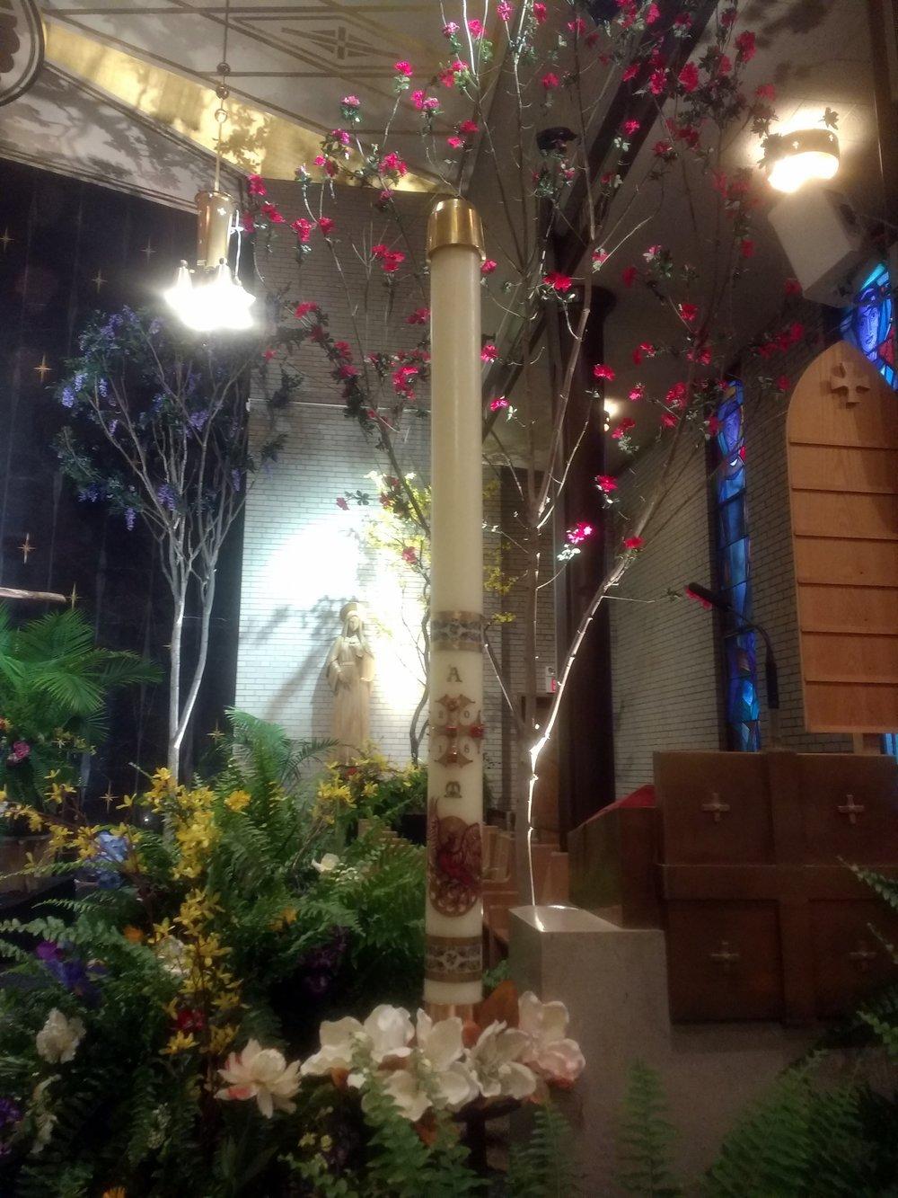 St Gertrude, Cincinati OH