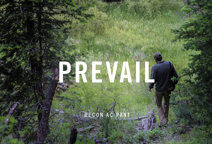 Dispatch 02052016 - Prevail