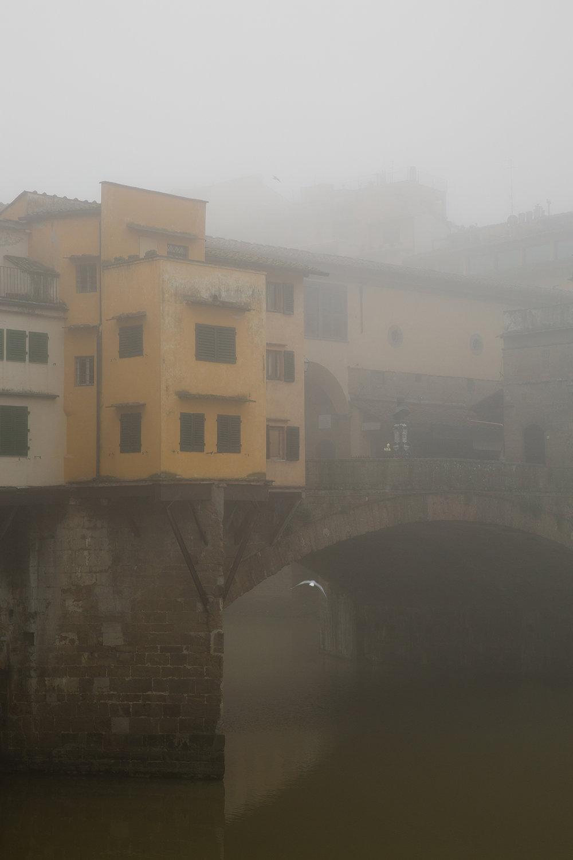 foggy florence 5