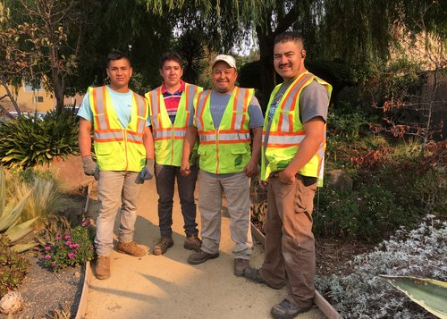 Lainez Crew weeds, prunes and plants GBD parks and greenspaces