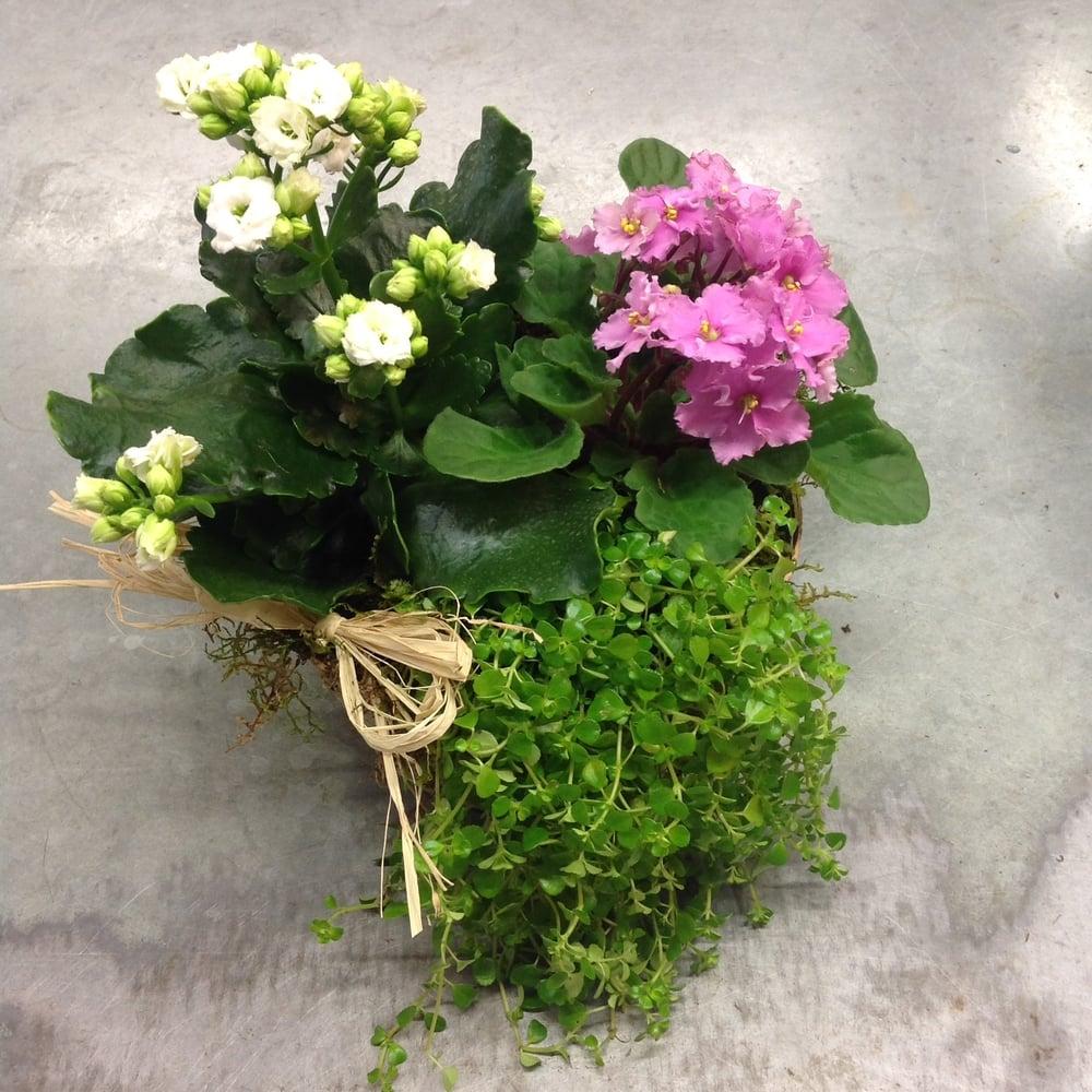72. Flowering Dish Garden