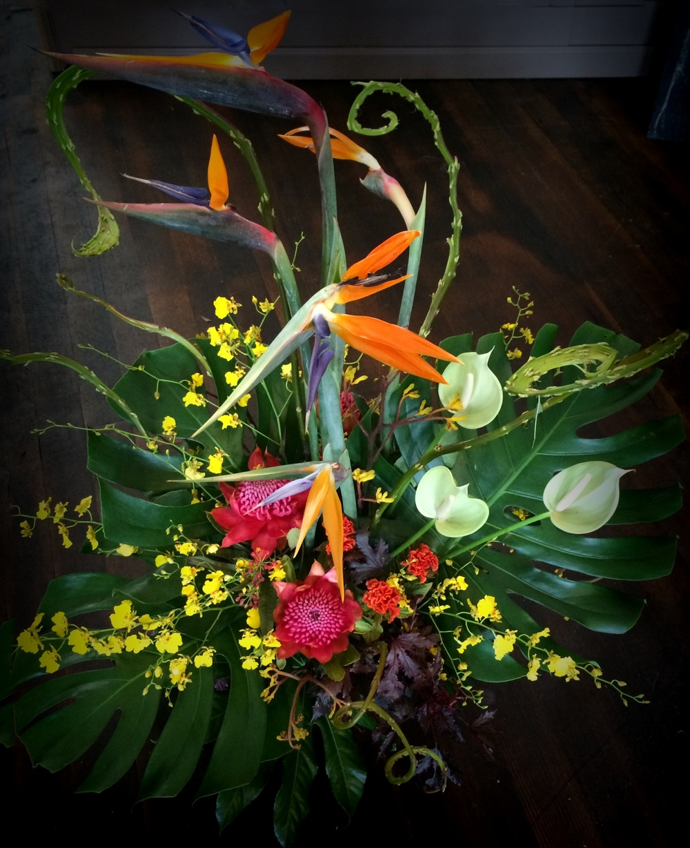 56. Tropical Showstopper with Protea and Orchids