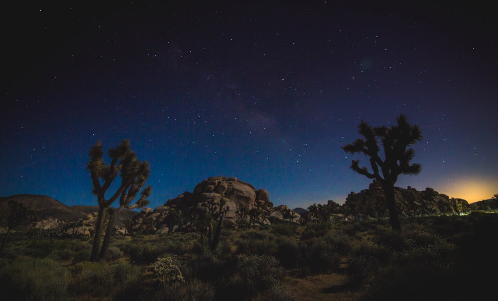 Mother Nature - Joshua Tree National Park