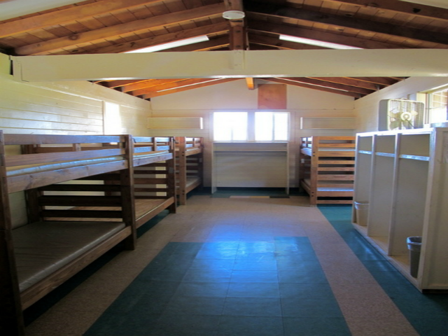 GINDLING BUNKS.png