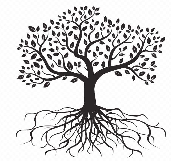SS-Roots.jpg