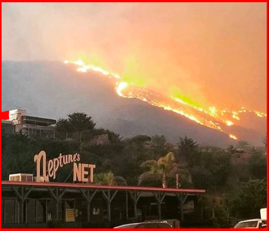 MCLA's beloved and sacred     Gindling Hilltop Camp     was totally and completely burned to the ground as the     Woolsey fire     roared through the hills over Malibu and the Pacific Ocean destroying everything in sight .