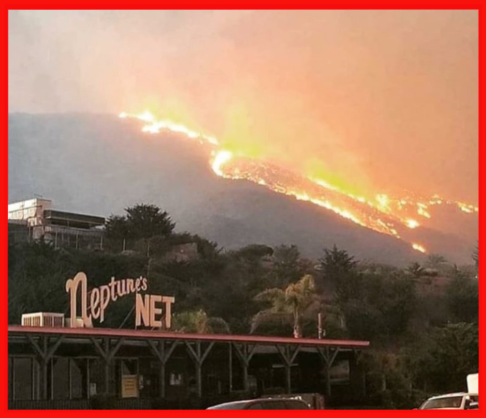 MCLA's beloved    Gindling Hilltop Camp    overlooking Malibu and the Pacific Ocean burned to the ground as the    Woolsey fire          roared through our sacred hills destroying everything in sight .