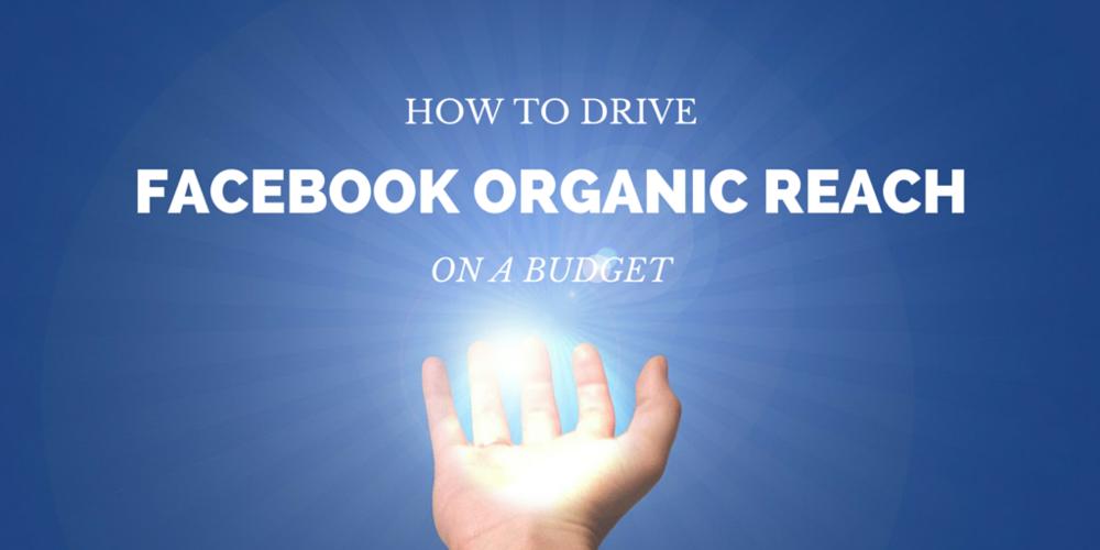 drive-facebook-organic-reach