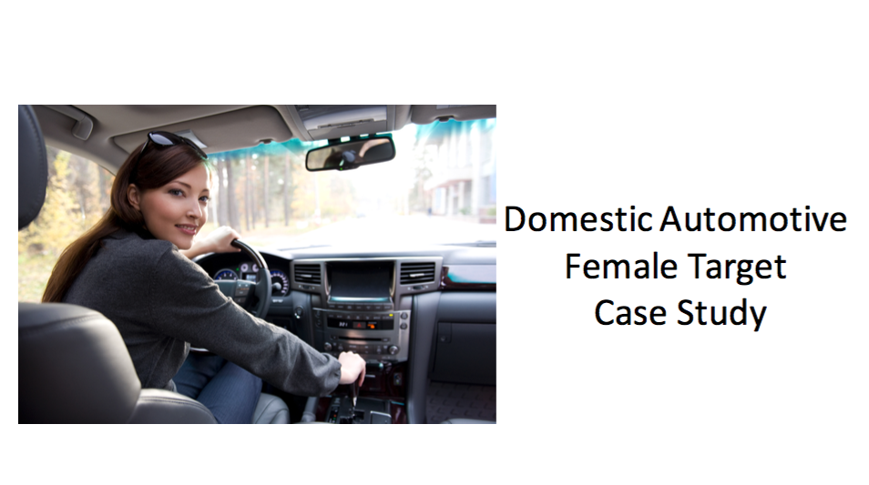 Domestic Female Target Case Study