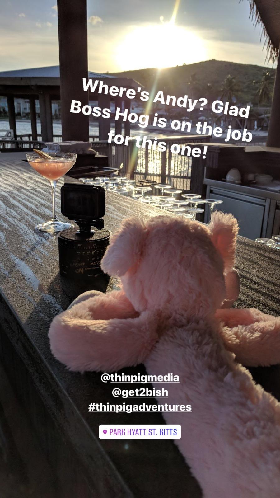 boss hog.jpg