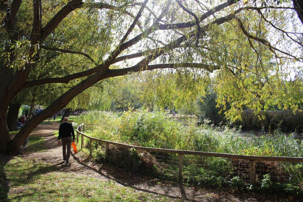 Best London Parks, Barnes Pond