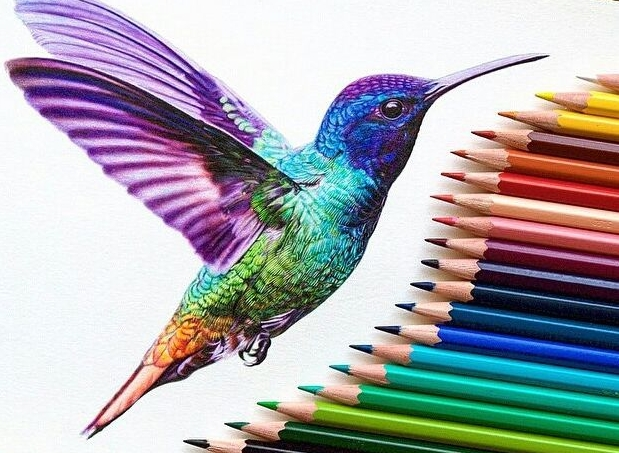 ef2aff99f66aa43d4981e2f4cf90d32a_image-result-for-color-pencil-art-doodles-color-pencil-ideas-color-pencil-drawing-pictures_637-607.jpeg