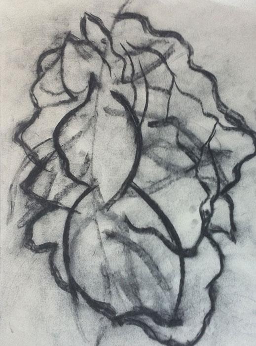 GONZALO_MARTIN-CALERO-DRAWINGS-flower-drawings-05.jpg