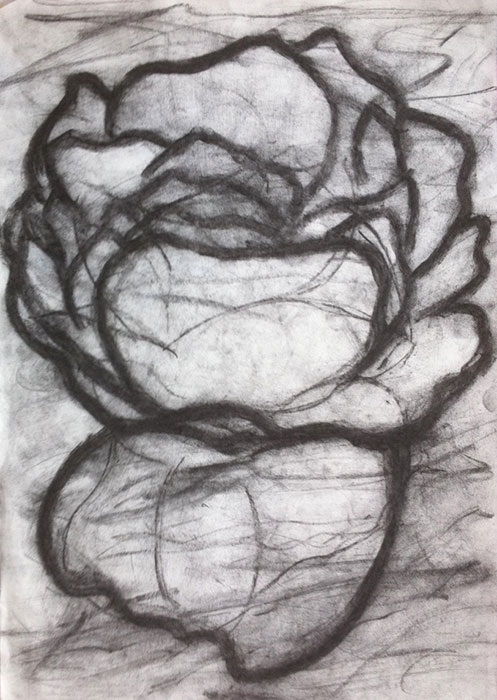 GONZALO_MARTIN-CALERO-DRAWINGS-flower-drawings-11.jpg